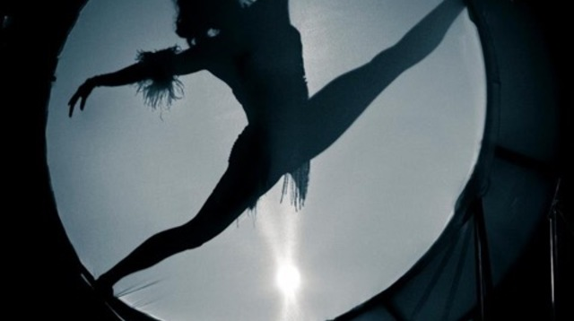 Aerialist Screen Silhouette.jpeg