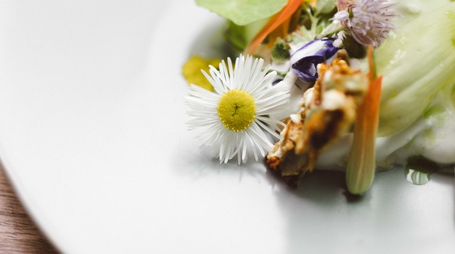 Thistle-and-Mint-Denver-Jimena-Peck-Lifestyle-Food-Photographer--3900.jpg