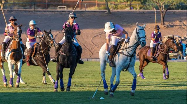 Polo Players.JPG