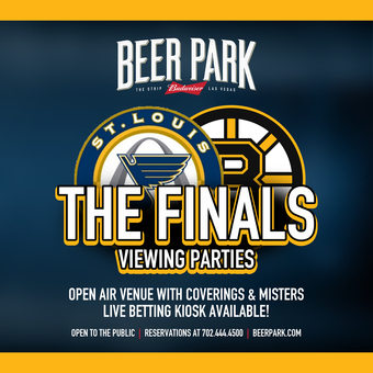 NHL Finals Viewing Party