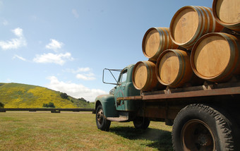 Sanford Winery and Vineyard's Annual Harvest Party 2015