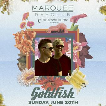 Goldfish : Full Bloom