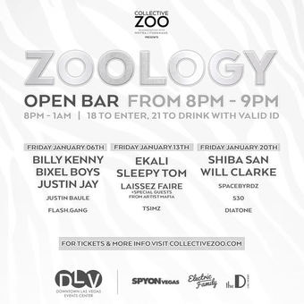 ZOOLOGY Presented by Collective Zoo