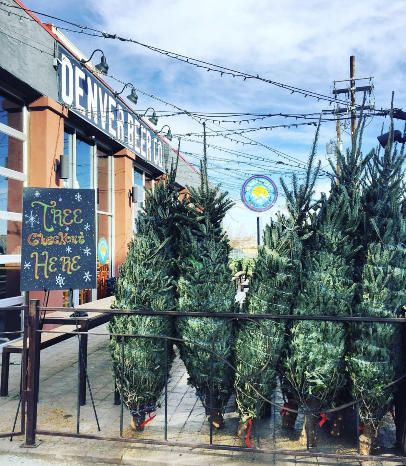 Denver Beer Co S Christmas Tree Farm Both Taprooms