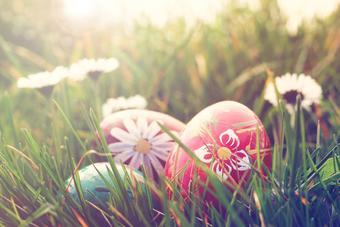 Easter Egg Hunt and Sunday Brunch Buffet