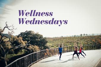 Wellness Wednesdays at Spa Terra