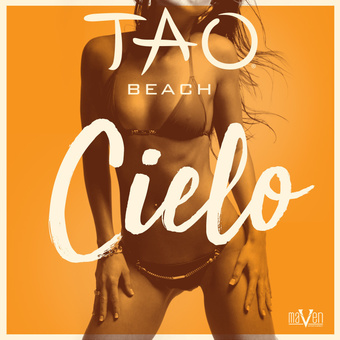TAO Beach - Cielo Sundays