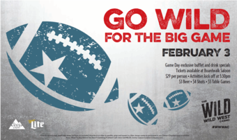 Go Wild for the Big Game