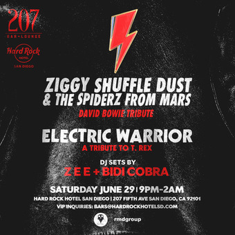 Ziggy Shuffle Dust & The Spiderz from Mars presented by BLK OWL