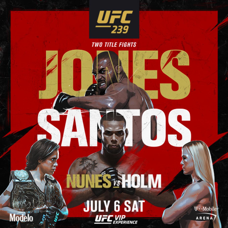 UFC 239: Jones vs. Santos at D...