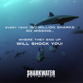 Sharkwater: Extinction Film Screening