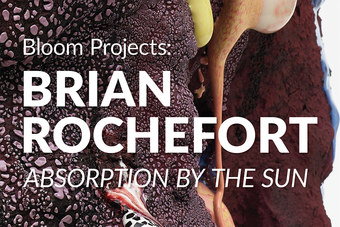 Opening Reception | Bloom Projects: Brian Rochefort, Absorption by the Sun