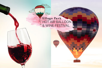 Elings Park Hot Air Balloon and Wine Festival
