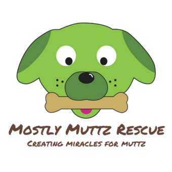 Mostly Muttz Rescue Comedy Fundraiser