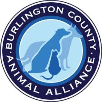 Burlington County Animal Alliance Comedy Fundraiser