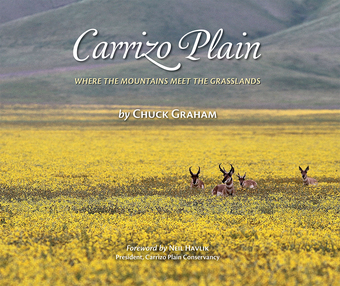 "Carrizo Plain ""Where the Mountains Meet the Grasslands"""