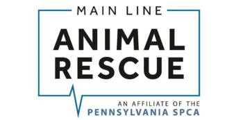 In Memory of Bo Delano-Main Line Animal Rescue Comedy Fundraiser at SoulJoel's Dome