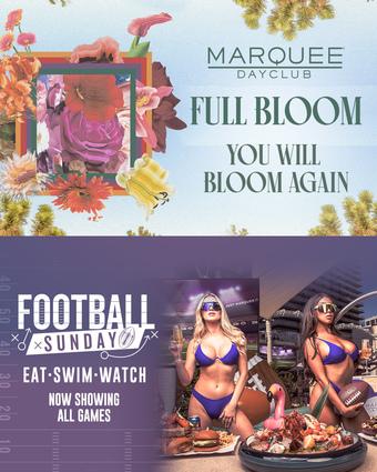 FULL BLOOM: DOM DOLLA + FOOTBALL SUNDAY